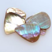 Abalone Tones - Greenlip - 1 Guitar Pick | Timber Tones